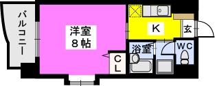 BRILLIANT36 / 507号室間取り
