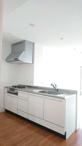サントラップ / 202号室キッチン