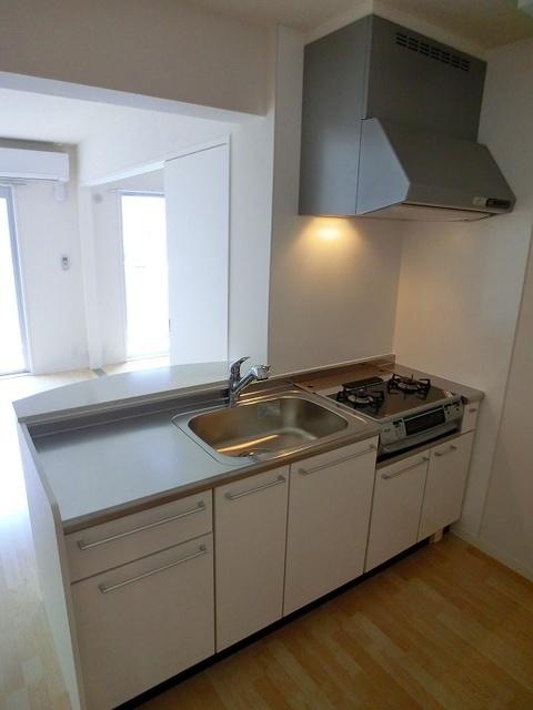 シエラハウス / 201号室キッチン