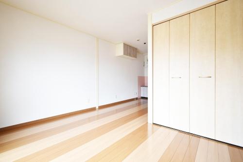 ニューライフマンション / 302号室洋室