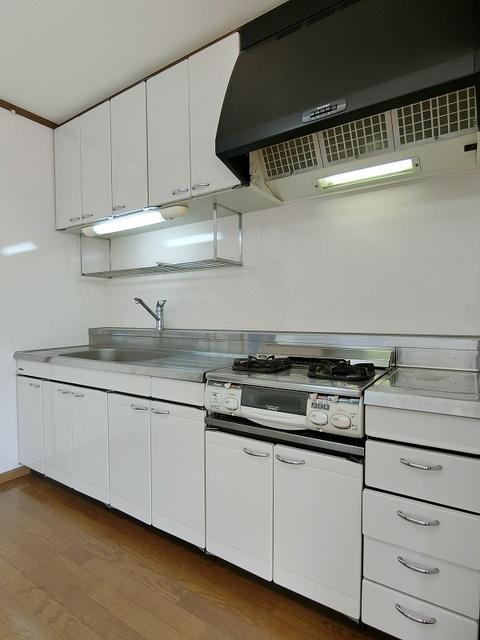 ロイヤルコーポ神田 / 102号室キッチン