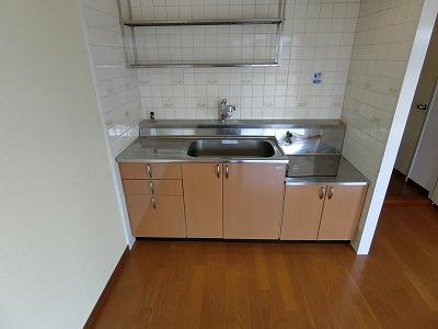 レジデンス飯田 / 107号室キッチン