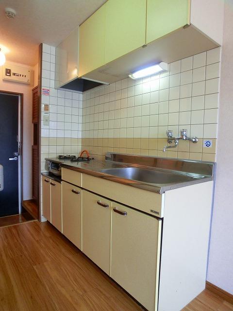 グルニエS・T / 201号室キッチン