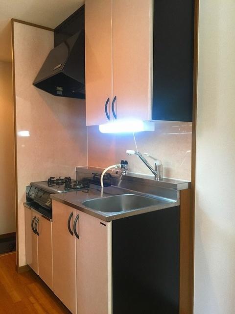 レグラス98 / 101号室キッチン