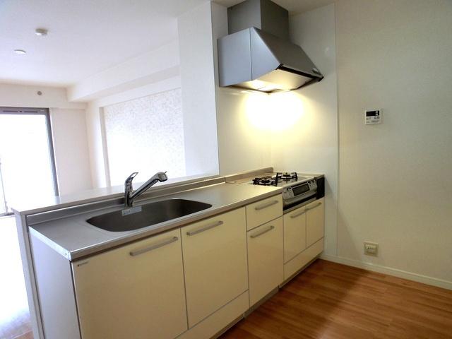 グラン・ジュテM / 102号室キッチン