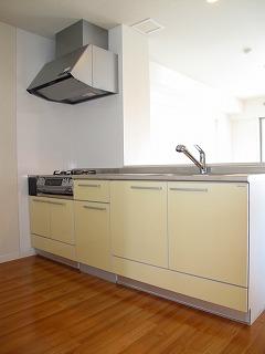 グラン・ジュテM / 501号室キッチン