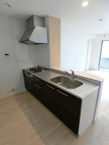 アークトゥルスY / 201号室キッチン