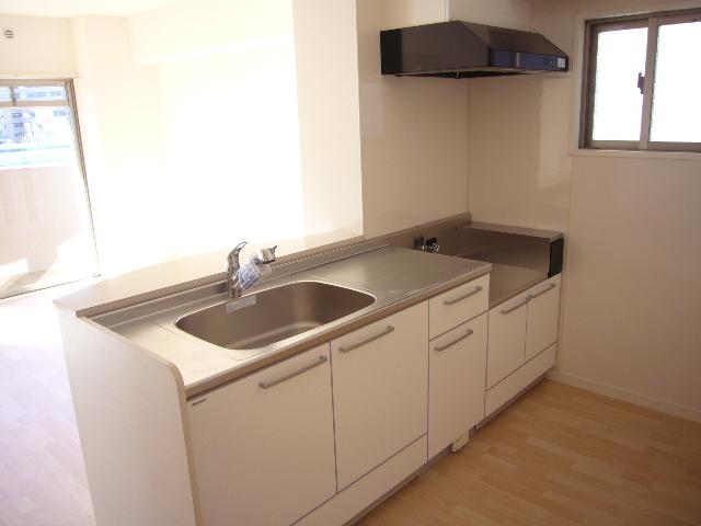 ルグラン博多駅南 / 401号室キッチン