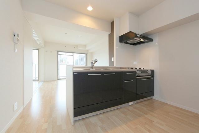 アステリオン / 401号室キッチン
