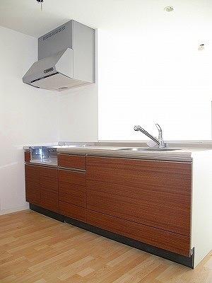 パーク ストリーム / 402号室キッチン