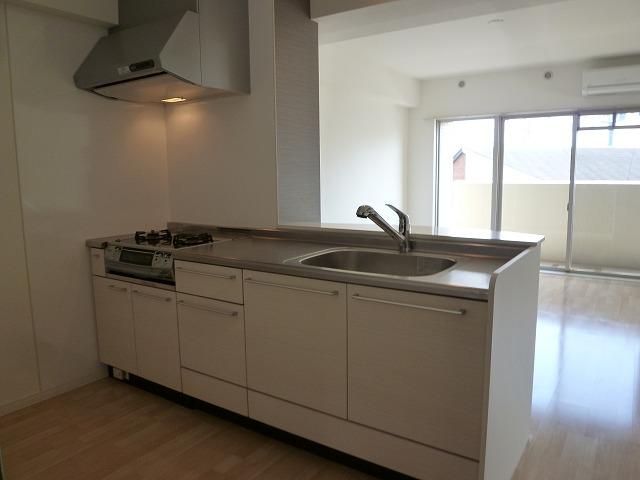 オリオン3 / 201号室キッチン