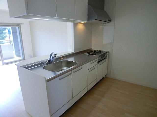 サントラップ / 101号室キッチン