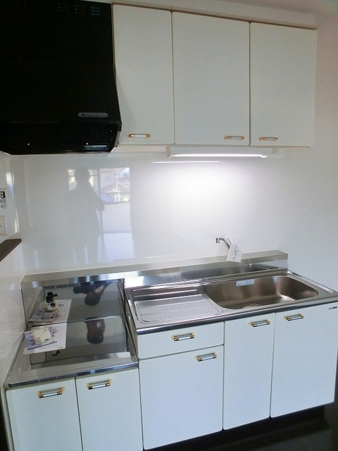 紙屋ビル / 401号室キッチン