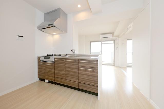 ハルコート大橋 / 201号室キッチン