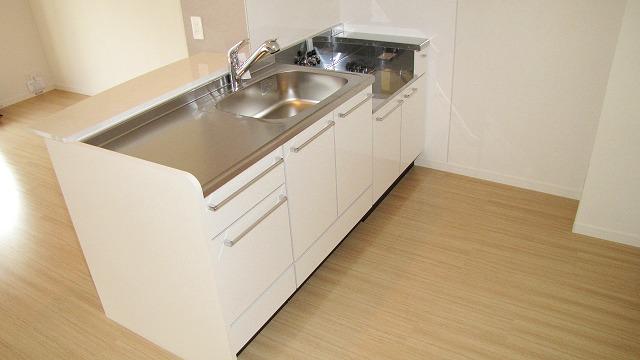 シエラハウス / 206号室キッチン