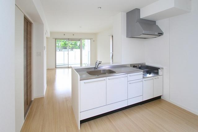 グランドゥールステラ / 201号室キッチン