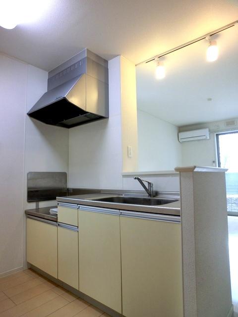 ローズハイム野多目 / 202号室キッチン