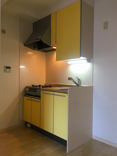 ラヴィ ヌーヴォ / 502号室キッチン