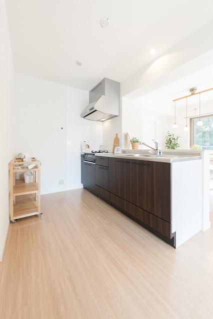 エミリーナ / 401号室キッチン