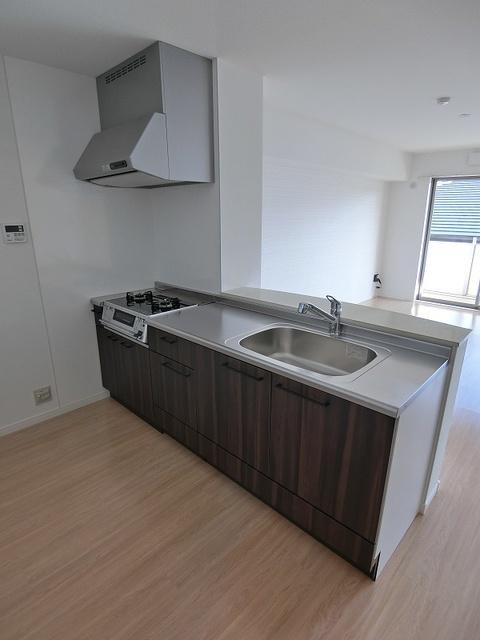 エミリーナ / 502号室キッチン