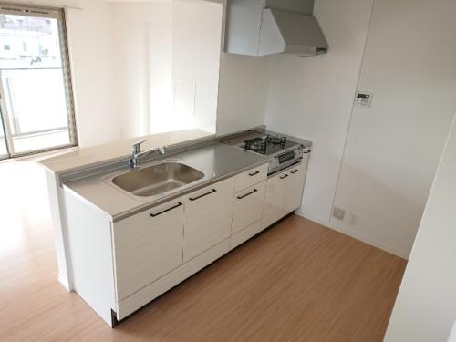 ラ・エクラン / 101号室キッチン