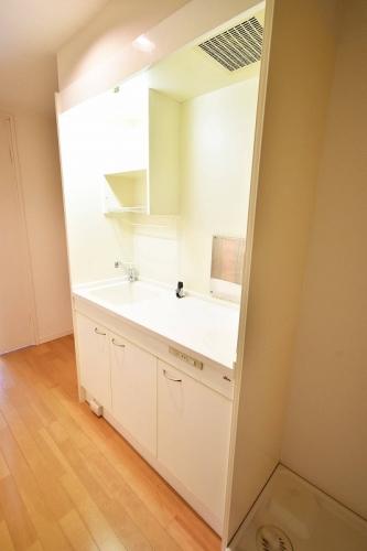 ラポート竹下 / 203号室キッチン