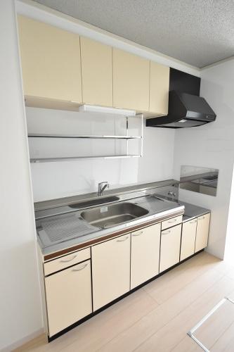 エクセレント12 / 105号室キッチン