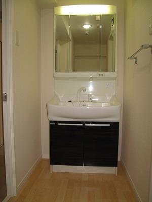 アークトゥルスY / 201号室洗面所