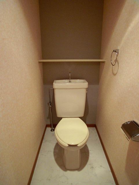 サンコート野多目 / 203号室トイレ