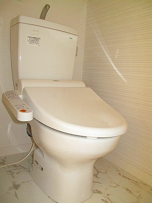 パーク ストリーム / 202号室トイレ
