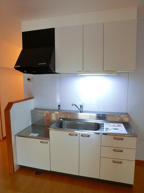 紙屋ビル / 103号室キッチン