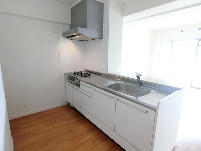 プレミールM / 202号室キッチン
