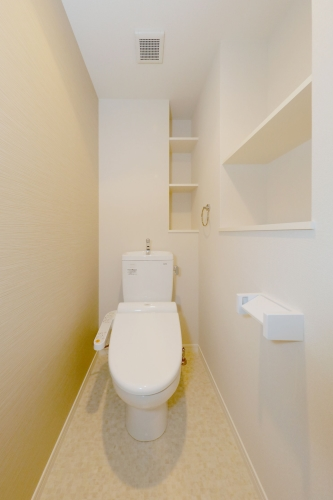 ハルコート大橋 / 701号室トイレ