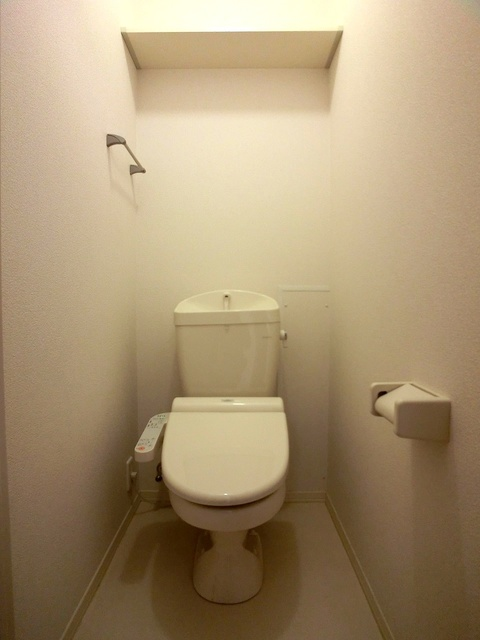 ローズハイム野多目 / 201号室トイレ