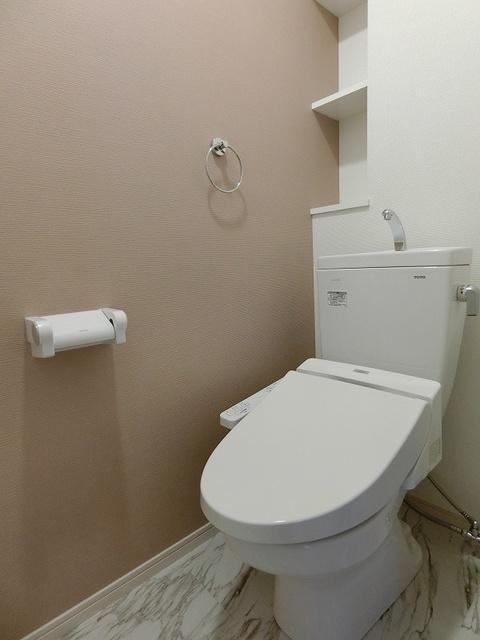 ドエル大橋南 / 102号室トイレ