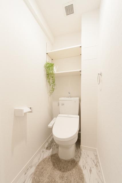 エミリーナ / 401号室トイレ