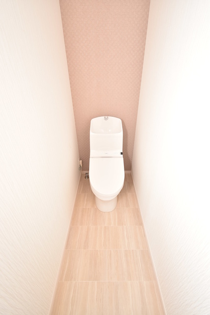 メゾングレイス / 202号室トイレ