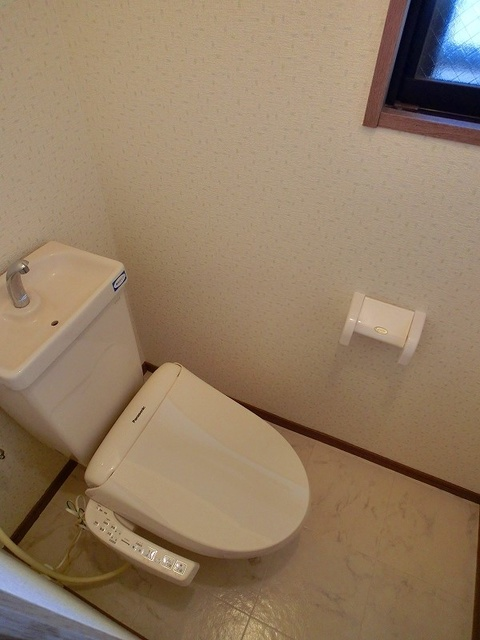 ルミエール博多 / 601号室トイレ