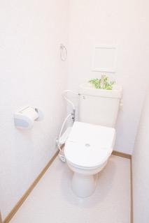 コスモコート / 210号室トイレ