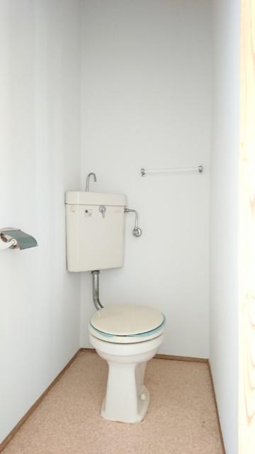 大賀レジデンス / 203号室トイレ
