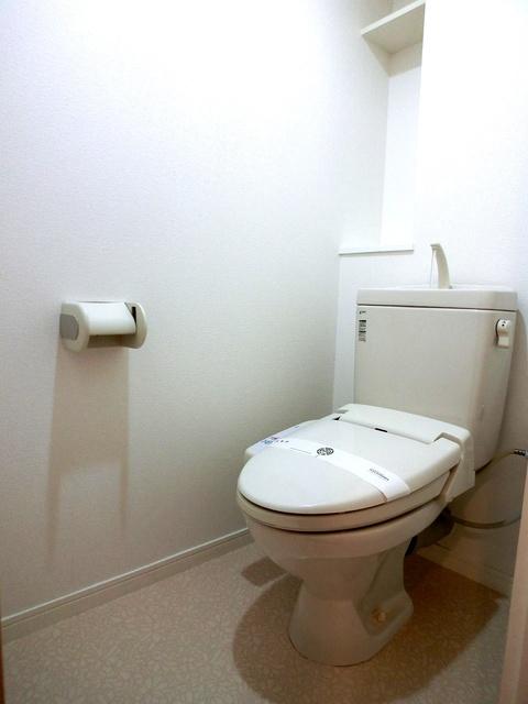 クレールブラン / 203号室トイレ