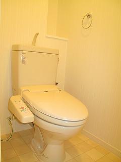 クレールブラン / 302号室トイレ