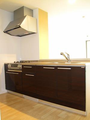 アークトゥルスY / 302号室キッチン