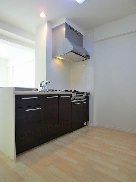 フローレス大橋 / 201号室キッチン