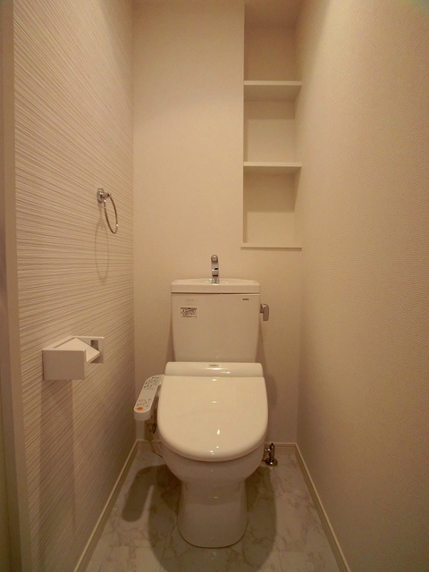 ココテラスK / 501号室トイレ