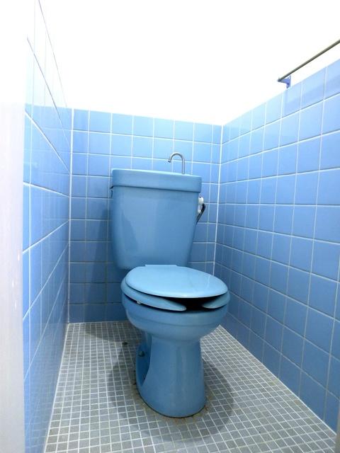 サンライズコーポ / 203号室トイレ