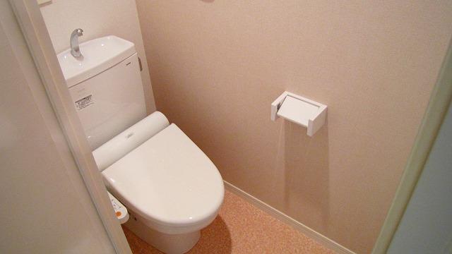 シエラハウス / 107号室トイレ