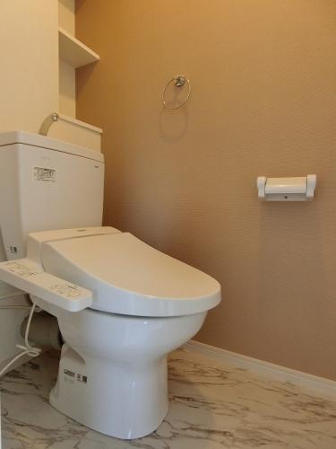 ドエル大橋南 / 203号室トイレ