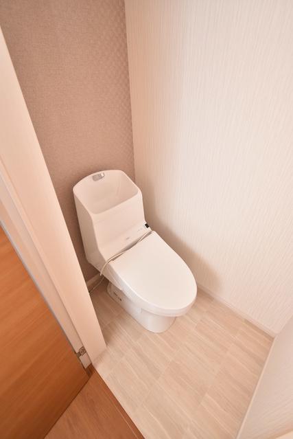 メゾングレイス / 103号室トイレ