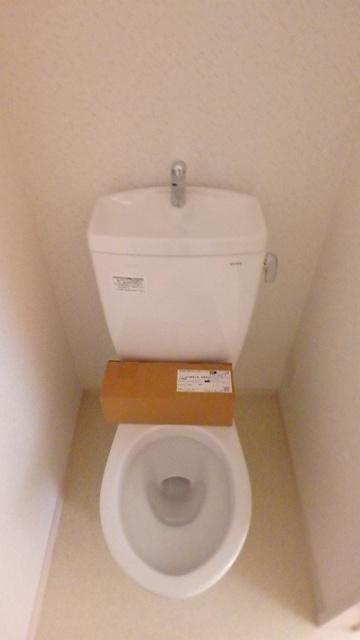 メゾングレイス / 201号室トイレ